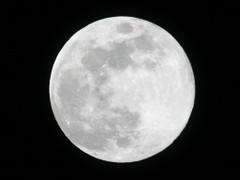 Moon0103_1